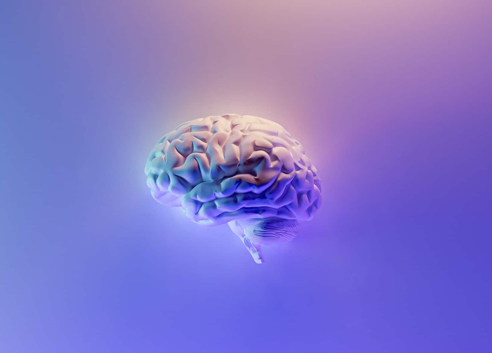 Ilustración cerebro creatividad y tecnología
